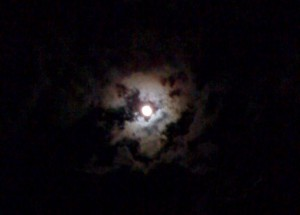 The moon in my back yard